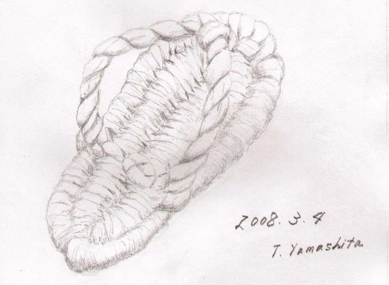 Zouri1s